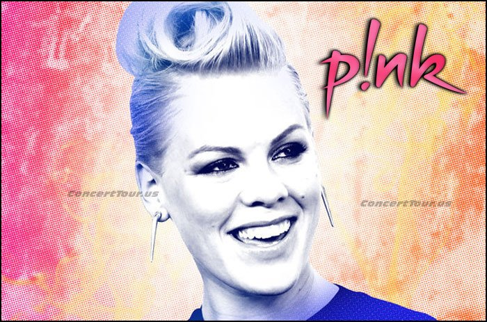 P!NK is so amazingly talented that she even writes music and songs for other huge entertainers!