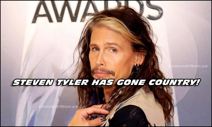 In this pic, Steven Tyler smiles for the camera at the 49th Annual Country Music Association Awards Show.