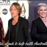 Celebrities begin to donate funds for Battling Australian Bushfires. P!NK, Nicole Kidman, Keith Urban just to name a few.